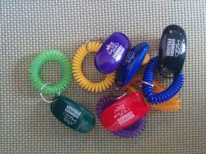 Klickers i olika färger med Sveriges Akademiska Etologers logga